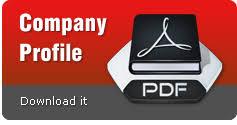 Software It Company Malaysia